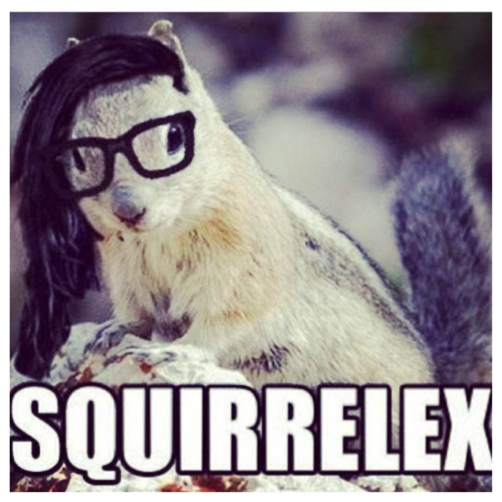 Squirrelex