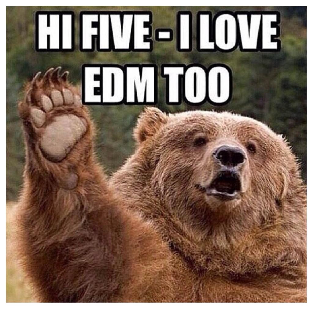 EDM Bear