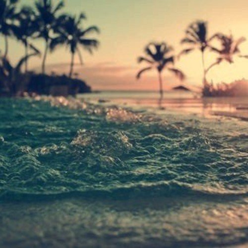 Tropical house playlist 20 tracks to bring the vibes for House music tracks