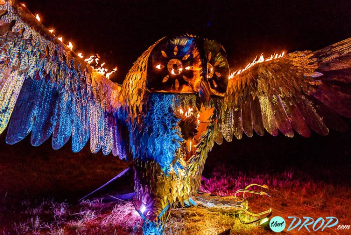 Reliving the Moment: 130 Stunning Photos from Sonic Bloom 2015