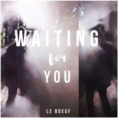 La Boeuf - Waiting For You