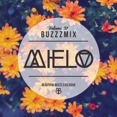 Buzzzmix Vol. 37 by Mielo